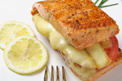 Salmon cancato Stock Photos