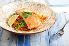 Salmon with Carrot Slaw. Asian influenced Salmon and carrot slaw Royalty Free Stock Photo