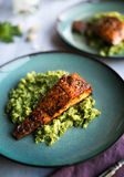 Salmon with Cauliflower Rice Royalty Free Stock Images