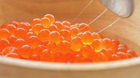 Salmon caviar closeup. Fresh salmon caviar in the wooden pot UHD stock footage