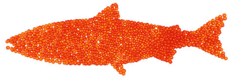Salmon Caviar fish shape Stock Image