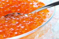 Salmon caviar in ice Stock Image