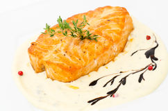 Salmon with cheese sauce Stock Photos