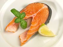 Salmon Chop - faixa de peixes foto de stock royalty free