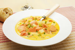 Salmon Chowder Royalty Free Stock Photography