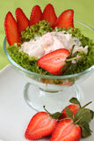Salmon cocktail with strawberries Stock Image