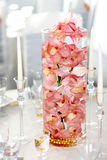 Salmon colored (light pink) orchids in a water glass decorate on. Salmon colored (light pink) orchids in a water glass decorate a table Stock Photography