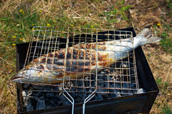 Salmon  cooking on a grill Royalty Free Stock Photos