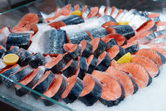 Salmon on cooled market display Royalty Free Stock Photography