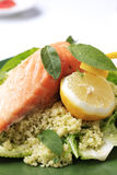 Salmon and couscous Royalty Free Stock Image