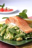 Salmon and couscous Stock Image
