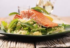 Salmon and couscous Royalty Free Stock Photography