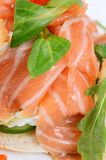Salmon with cream cheese Stock Photography