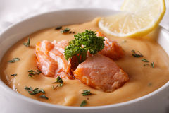 Salmon cream soup with lemon and herbs in a bowl macro. horizont Royalty Free Stock Photo