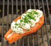 Salmon with creamcheese on grill. Salmon with creamcheese and green onion on grill with charcoal stock photography