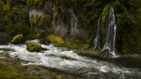 Salmon Creek Falls stock video