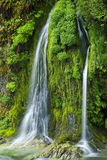 Salmon Creek Falls, Oregon. Beautiful Elk Creek Falls in Oregon with lush green vegetation Royalty Free Stock Photography