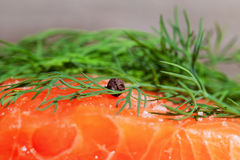 Salmon and dill. Royalty Free Stock Image