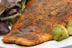 Salmon dinner Royalty Free Stock Photos