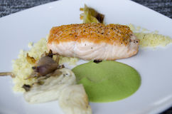 Salmon Dinner Royaltyfria Bilder