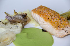 Salmon Dinner Royaltyfri Bild