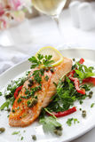 Salmon Dinner Royalty Free Stock Photo