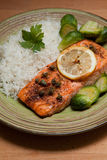 Salmon dish Stock Photography