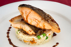 Salmon dish on bed of risotto. Delicious dish of salmon seated on a bed of risotto and drizzled with balsamic dressing Royalty Free Stock Photo