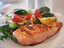 Salmon, Dish, Food, Meal, Fish Royalty Free Stock Images