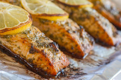 Salmon dish with lemon (close up) Royalty Free Stock Image
