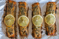 Salmon dish with lemon Stock Photos