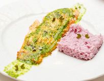 Salmon dish with rice Stock Photography