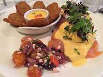Salmon Egg benedicts Royalty-vrije Stock Afbeelding