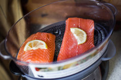 Salmon in electric steamer Stock Photography
