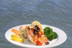 Salmon Entree sobre o oceano imagem de stock royalty free