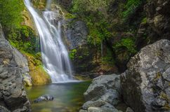 Salmon Falls. Paradise oasis at Salmon Falls in this natural setting Royalty Free Stock Image