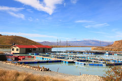 Salmon Farm Stock Image