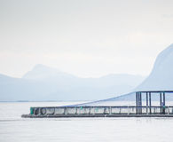 Salmon Farm fotografia stock