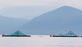 Salmon farm Stock Photography