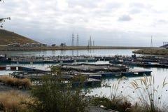 Salmon Farm på Nya Zeeland Arkivbild