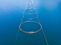 Salmon farming, fish farm in the sea stock images
