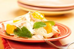 Salmon Fennel and Orange Salad Stock Image