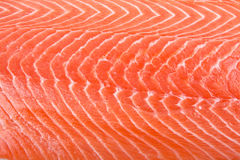 Salmon Filet Royalty Free Stock Photography