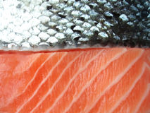 Salmon filet Royalty Free Stock Images