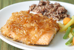 Salmon Filet with Brown Rice and Vegetables Royalty Free Stock Photography