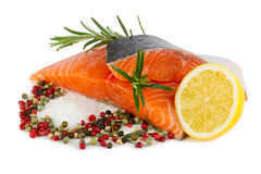 Salmon filet Royalty Free Stock Photo