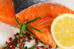 Salmon filet Stock Image