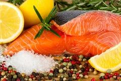 Salmon filet Stock Images
