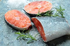 Salmon filets Stock Photos