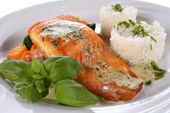 Salmon fillet Royalty Free Stock Photography